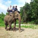 mae-hong-son-elephant-ride